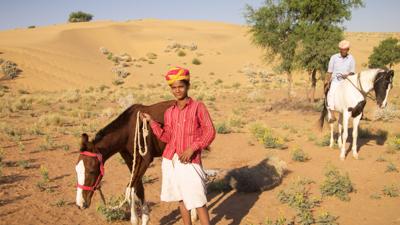 Im Bann der Pferde – Indien